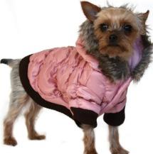 Diva Dogs ski jacket