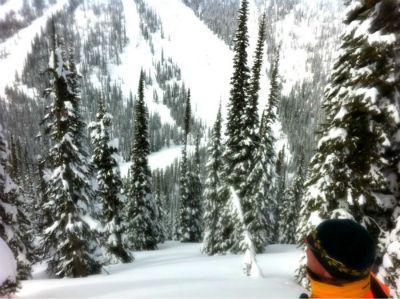 Epic Tree Skiing in Revelstoke