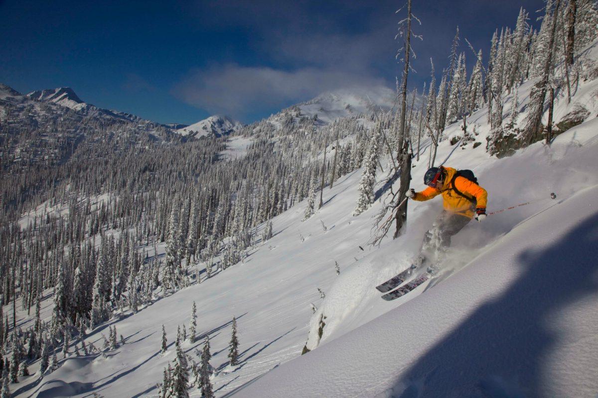cmh heli skiing canada re tree pitch purepowder purepowder